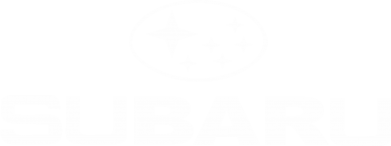 Купити Майка-тільняшка Subaru