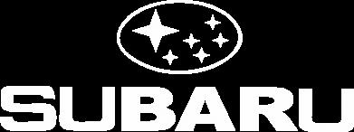 Купити Футболка Subaru