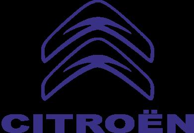 Купити Подушка Логотип Citroen