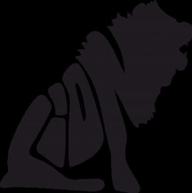 Купити Тільняшка з довгим рукавом Лев