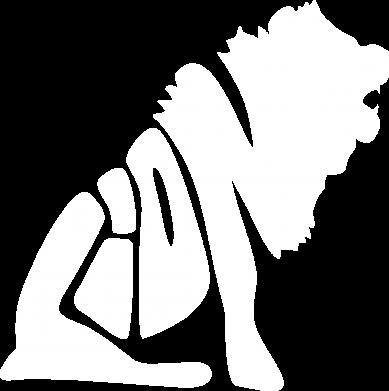 Купити Чоловічі труси Лев