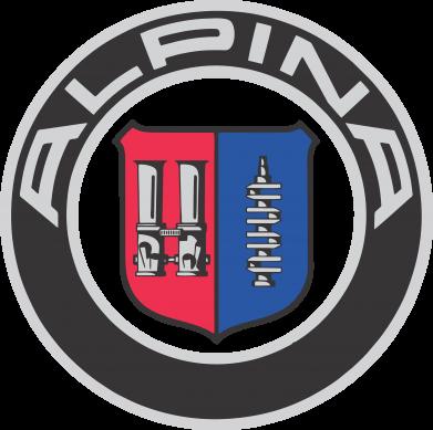 Купити Чоловічі шорти Alpina