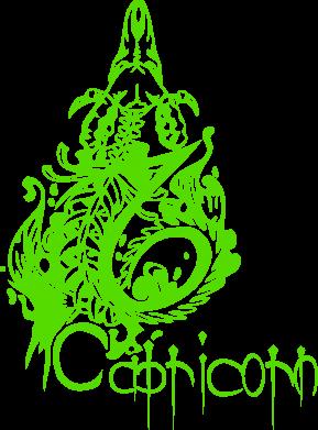 Купити Подушка Capricorn (Козеріг)