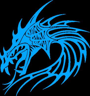 Купити Жіноча футболка Dragon