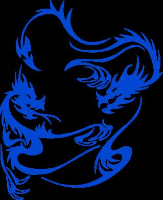 Купити Майка жіноча Dragons