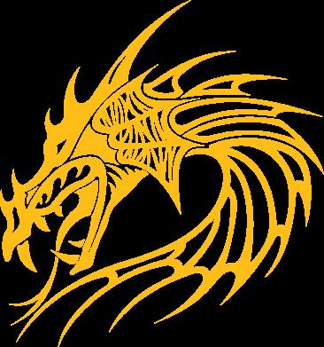 Купити Реглан Dragon